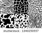 animal skin pattern. wildlife... | Shutterstock .eps vector #1340250557