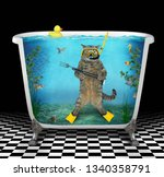 the cute cat diver with a... | Shutterstock . vector #1340358791