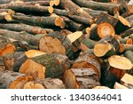 cut wood for firewood | Shutterstock . vector #1340364041