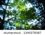 blurred out of focus swirly... | Shutterstock . vector #1340378387