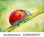 Ladybug On A Single Leaf In A...