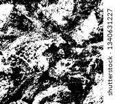 grunge black and white texture. ...   Shutterstock .eps vector #1340631227