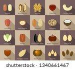 nut icon set. flat set of nut... | Shutterstock . vector #1340661467