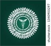 caduceus medical icon on...   Shutterstock .eps vector #1340903297