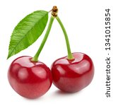 cherry leaf isolated on white.... | Shutterstock . vector #1341015854