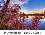 magic light during sundown on a ... | Shutterstock . vector #1341041057