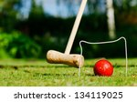 croquet in the garden on a... | Shutterstock . vector #134119025