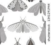 vector seamless pattern... | Shutterstock .eps vector #1341291944