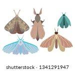 vector illustration of a... | Shutterstock .eps vector #1341291947