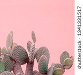 plants on pink creative concept.... | Shutterstock . vector #1341331517