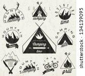 retro vintage style symbols for ... | Shutterstock .eps vector #134139095