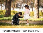 Kneeling Boy Proposing   Boy...