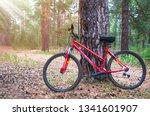 Red Mountain Bike  Bicycle...