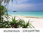 beautiful nature and white... | Shutterstock . vector #1341649784