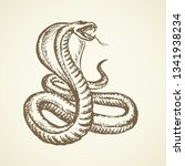 big curve creepy viperidae... | Shutterstock .eps vector #1341938234