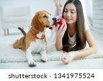 child with a dog  | Shutterstock . vector #1341975524