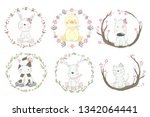 cute baby animal with border... | Shutterstock .eps vector #1342064441