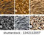 vector illustration set of... | Shutterstock .eps vector #1342112057