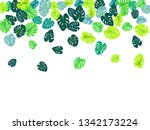 turquoise tropical jungle... | Shutterstock .eps vector #1342173224