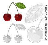 vector illustration of sour...   Shutterstock .eps vector #134229059