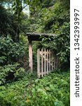 old door with nature at the...   Shutterstock . vector #1342393997
