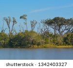 sawpit creek at big talbot...   Shutterstock . vector #1342403327