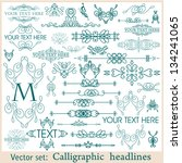 vector set  calligraphic design ... | Shutterstock .eps vector #134241065