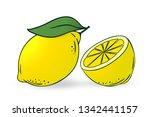 lemon and half of lemon  ... | Shutterstock .eps vector #1342441157