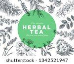 beautiful vector hand drawn tea ... | Shutterstock .eps vector #1342521947
