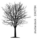 tree  vector  | Shutterstock .eps vector #1342784