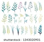 vector set of branches  leaves  ... | Shutterstock .eps vector #1343020901