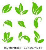 leaves icon vector set isolated ...   Shutterstock .eps vector #1343074364