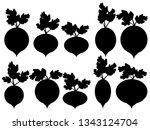 set of vector beet silhouette... | Shutterstock .eps vector #1343124704