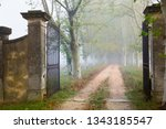 Open Iron Gate On Forest Foggy...