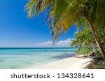 caribbean beach and palm tree | Shutterstock . vector #134328641