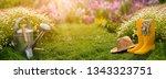 gardening tools in garden | Shutterstock . vector #1343323751