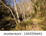 asturias  spain. hiking trail... | Shutterstock . vector #1343556641