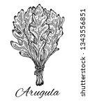 Ink Arugula Bunch Hand Drawn...