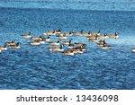 Canadian Armada Bunch Of Canad...