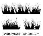 set with silhouettes of grass ... | Shutterstock .eps vector #1343868674