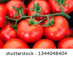 close up of red tomatoes in...