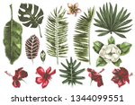 tropical leaves and flowers... | Shutterstock .eps vector #1344099551