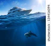 Underwater splitted by waterline postcard template. Bottlenose dolphin swimming under boat