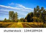 rural forest road landscape....   Shutterstock . vector #1344189434