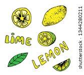 lemon and lime icons set in... | Shutterstock .eps vector #1344280211