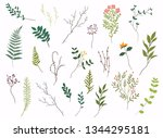 floral elements. hand drawn... | Shutterstock .eps vector #1344295181