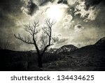 Silhouette Of A Lone Bare Tree...