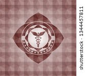 caduceus medical icon inside...   Shutterstock .eps vector #1344457811