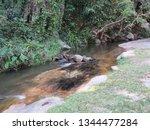 huay keaw waterfall   Shutterstock . vector #1344477284