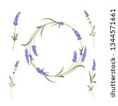 the lavender elegant card with... | Shutterstock .eps vector #1344571661
